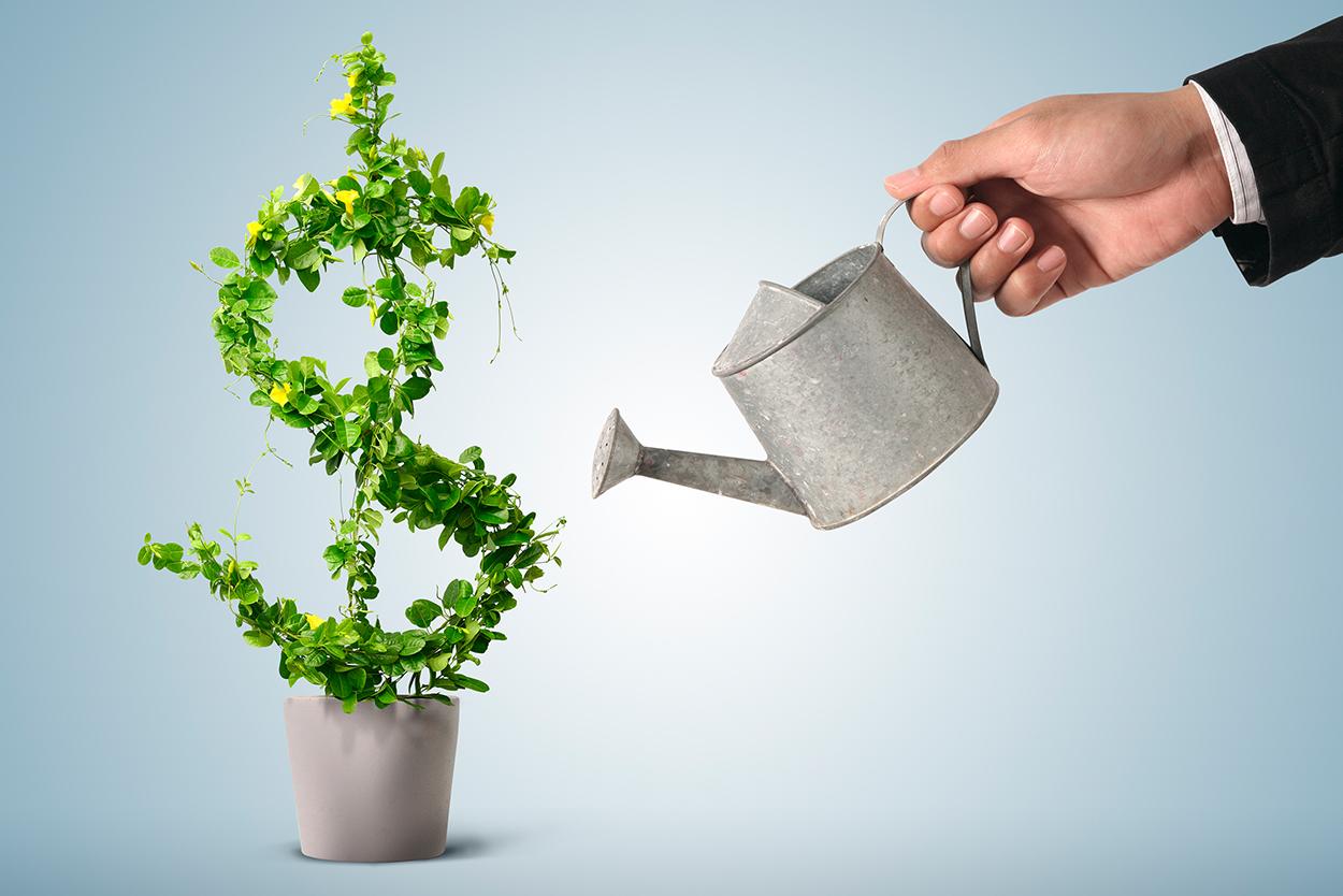 investimento-psicopedagógico psiqueasy