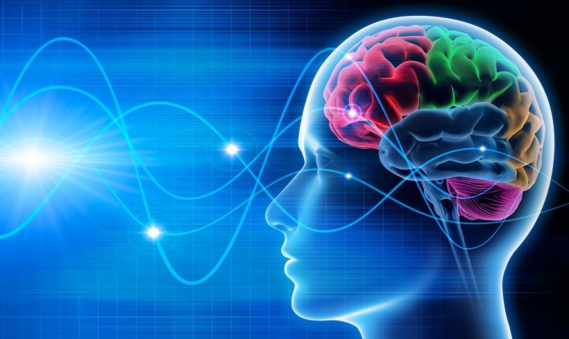 neuropsicopedagogia